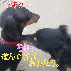 3_20110529170005.jpg