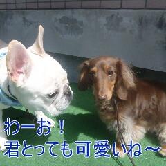 3_20110530185333.jpg