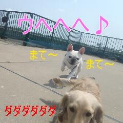 3_20110720171803.jpg