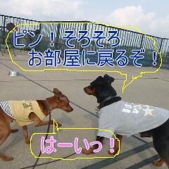 4_20110418185741.jpg