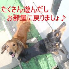 4_20110517182944.jpg