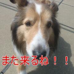 4_20110529163434.jpg