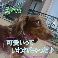 4_20110530185333.jpg