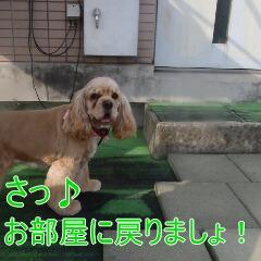 4_20110530185554.jpg