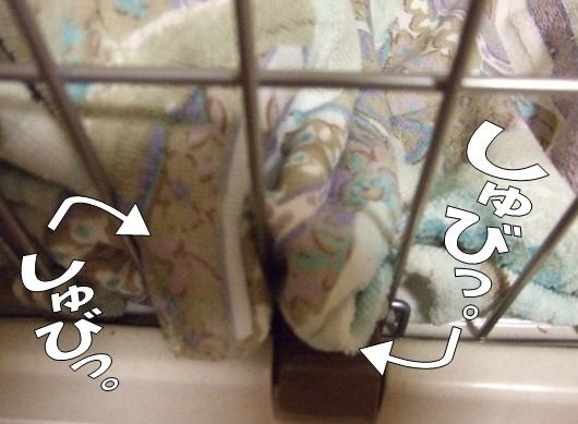 2010_0911は~ちゃん0003