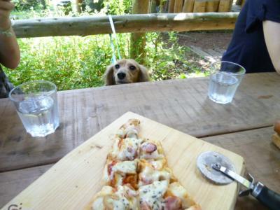 Tピザ美味しそう小400
