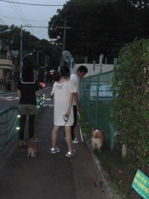 夕散歩N家が行く神社横 .400 縦