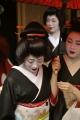 舞妓さん撮影のこと。 (2013年・8~10月度)-6