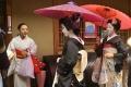 舞妓さん撮影のこと。 (2013年・8~10月度)-15