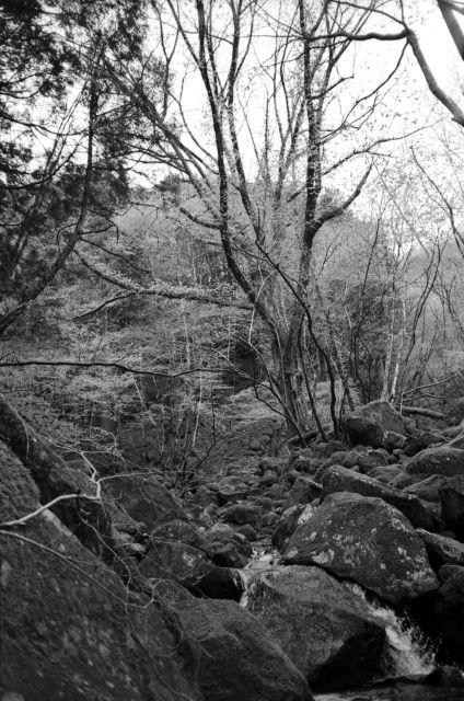 深山幽谷03c