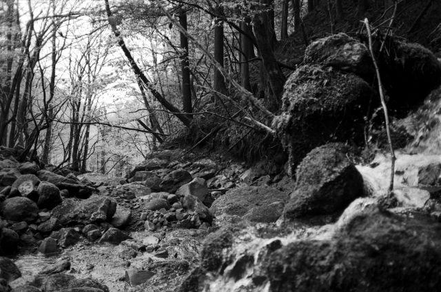 深山幽谷04a