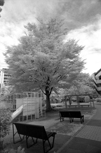 緑の街07f