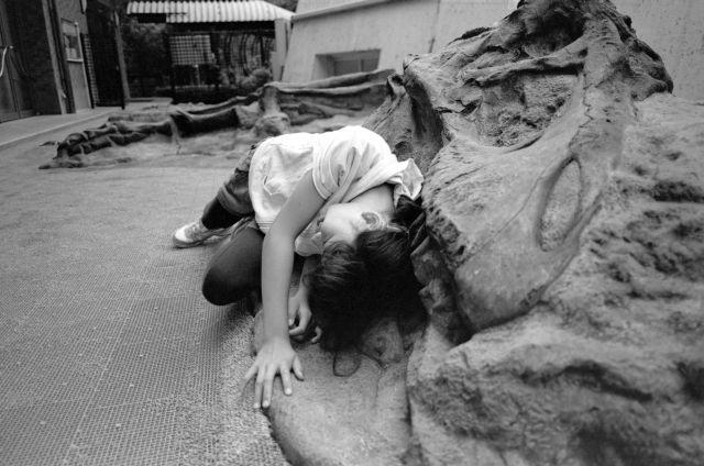 夏休みは恐竜01a