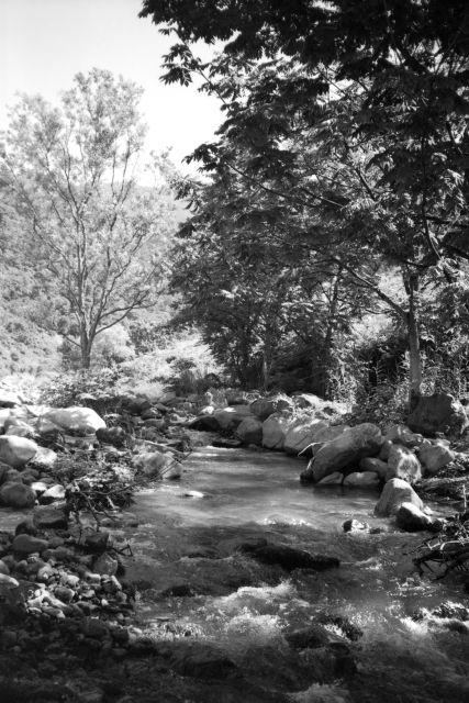 深山幽谷14d