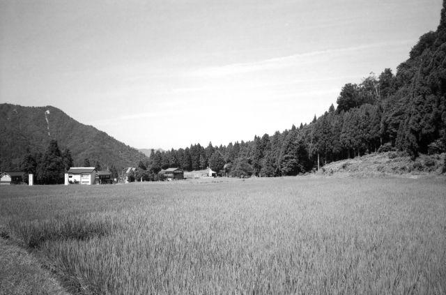 深山幽谷15a
