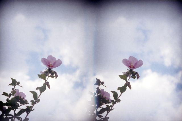 伊那の風景2012夏04e