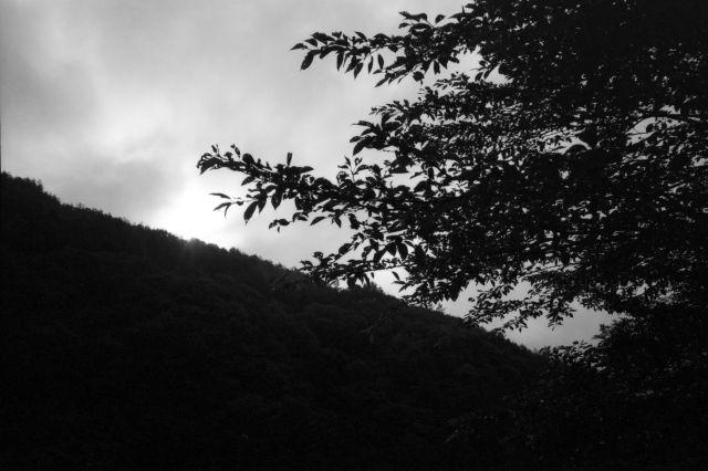 深山幽谷16a
