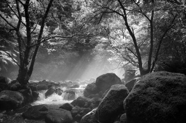 深山幽谷18d