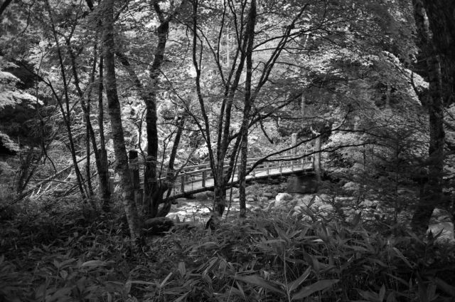 深山幽谷18a