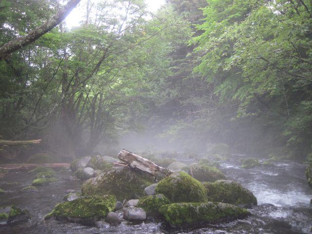 深山幽谷19f