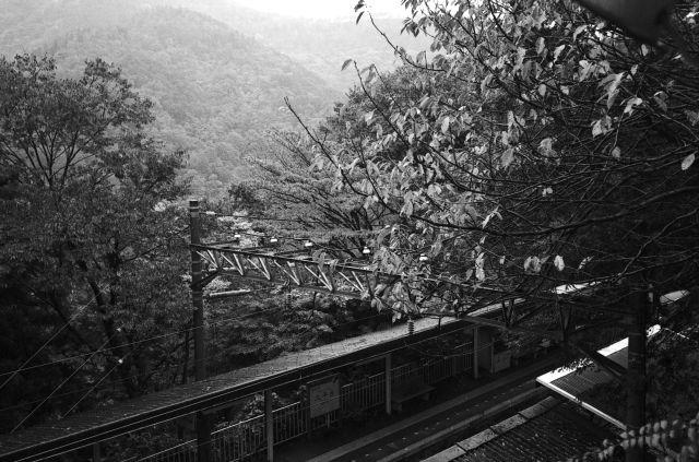 秋深し2012-01c