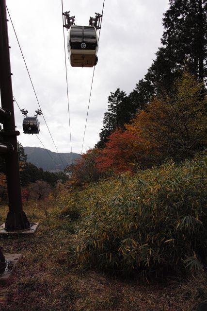 秋深し2012-05d