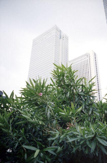 Skyline_Shinjuku03a