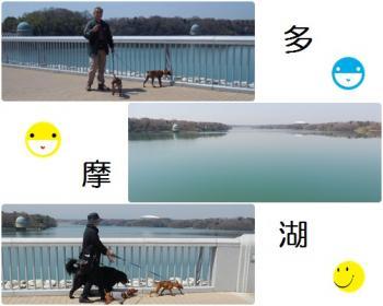 螟壽束貉棒convert_20120410085556