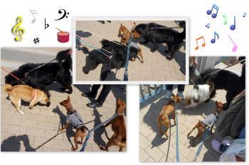 20122-002_convert_20120410090726.jpg