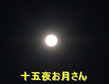 PA010180_convert_20121001203244.jpg