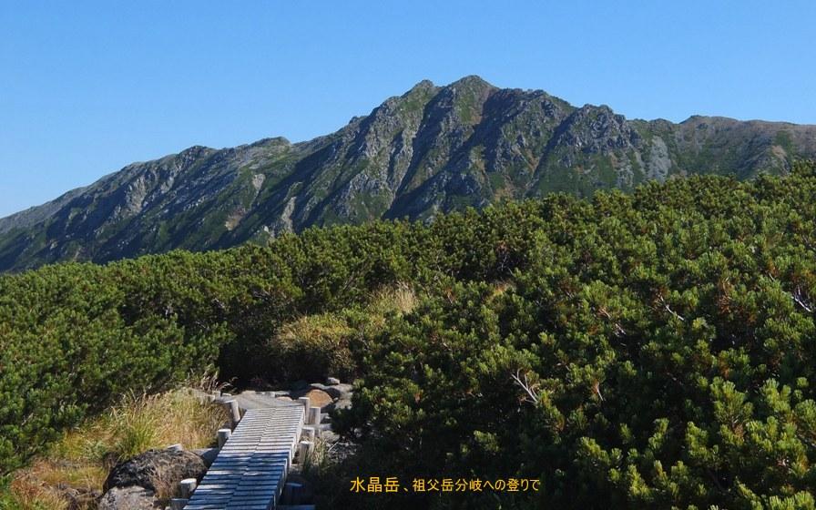 雲ノ平入口~祖父岳分岐5(水晶岳)