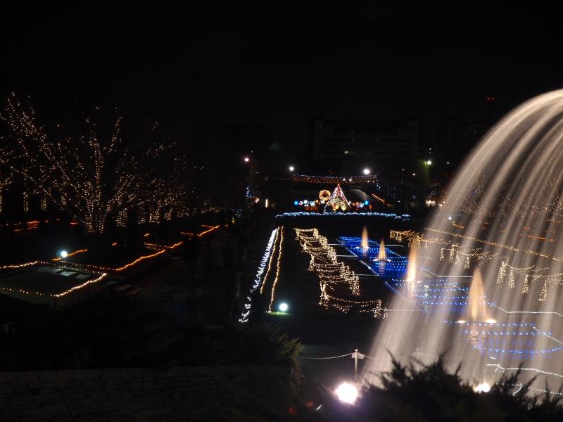 2012イルミ ・・・・ 昭和記念公園