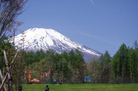 4Woof Mt.Fuji