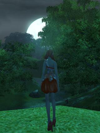 幻惑の森の月