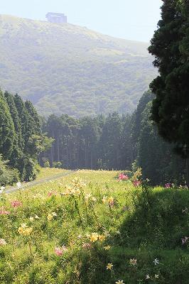 駒ケ岳の麓