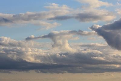 雲もT-BARだ。