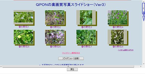 qpon1.png