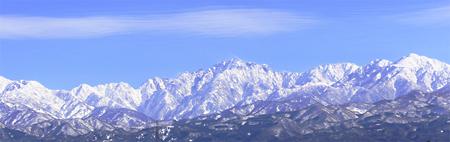 デグー 雪景色