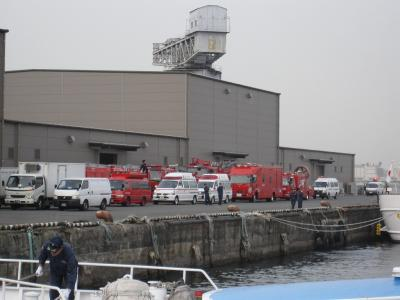 消防車たち