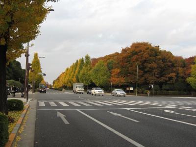 s-20101127_022.jpg