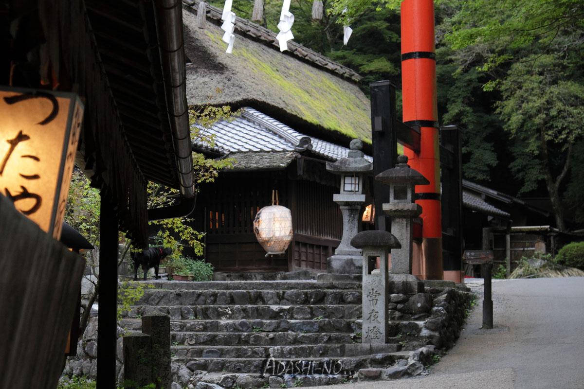 adashino002.jpg