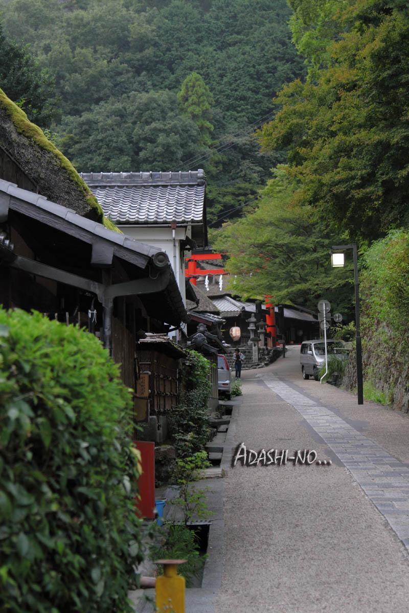 adshino003.jpg