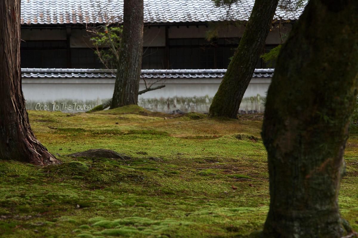 nanzenji0081.jpg