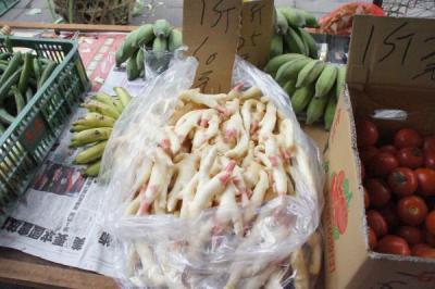 201205taiwan-27