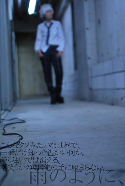 DSC_0810_20121121015022.jpg