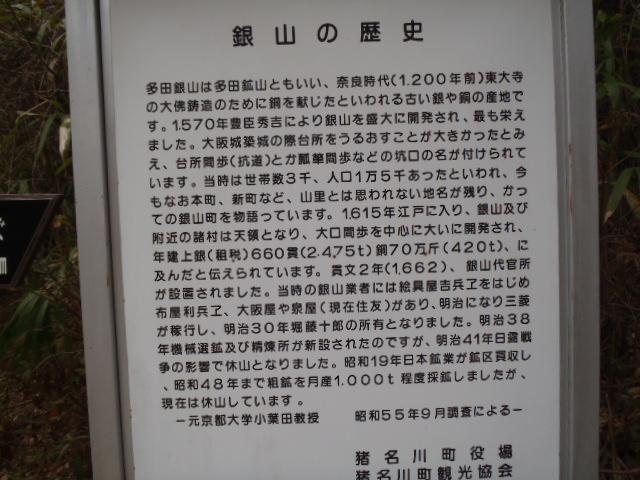 175.jpg