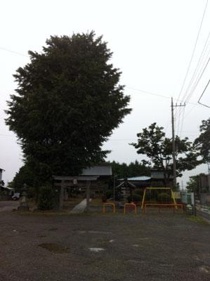 氷室神社20120722_3