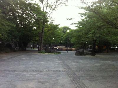 荒川_飛鳥山公園20120729_02