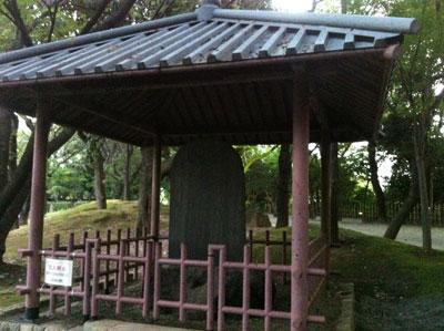 荒川_飛鳥山公園20120729_04