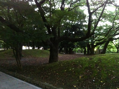 荒川_飛鳥山公園20120729_06